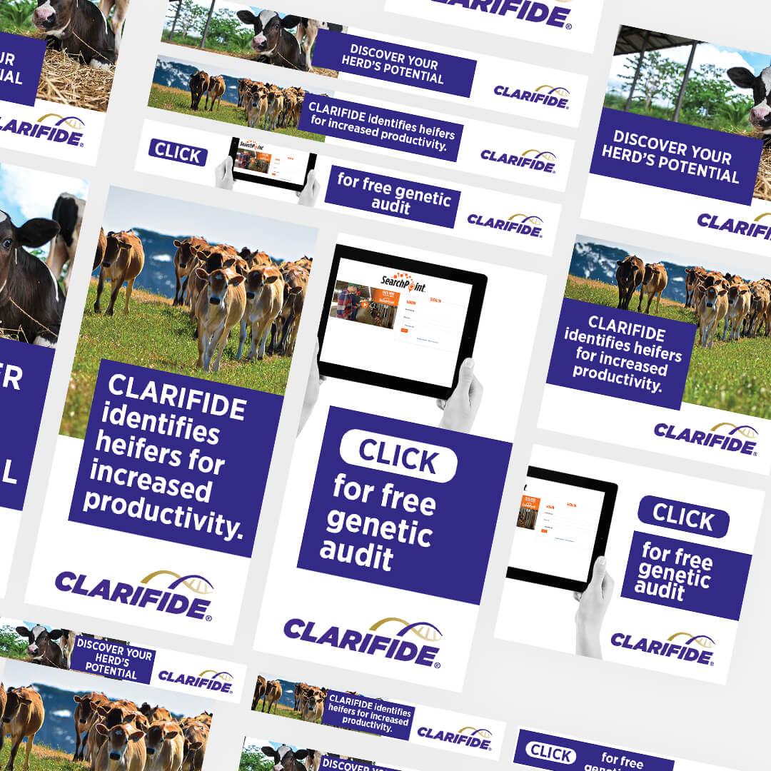 clarifide-banners-spce66-sydney-agency-tiles
