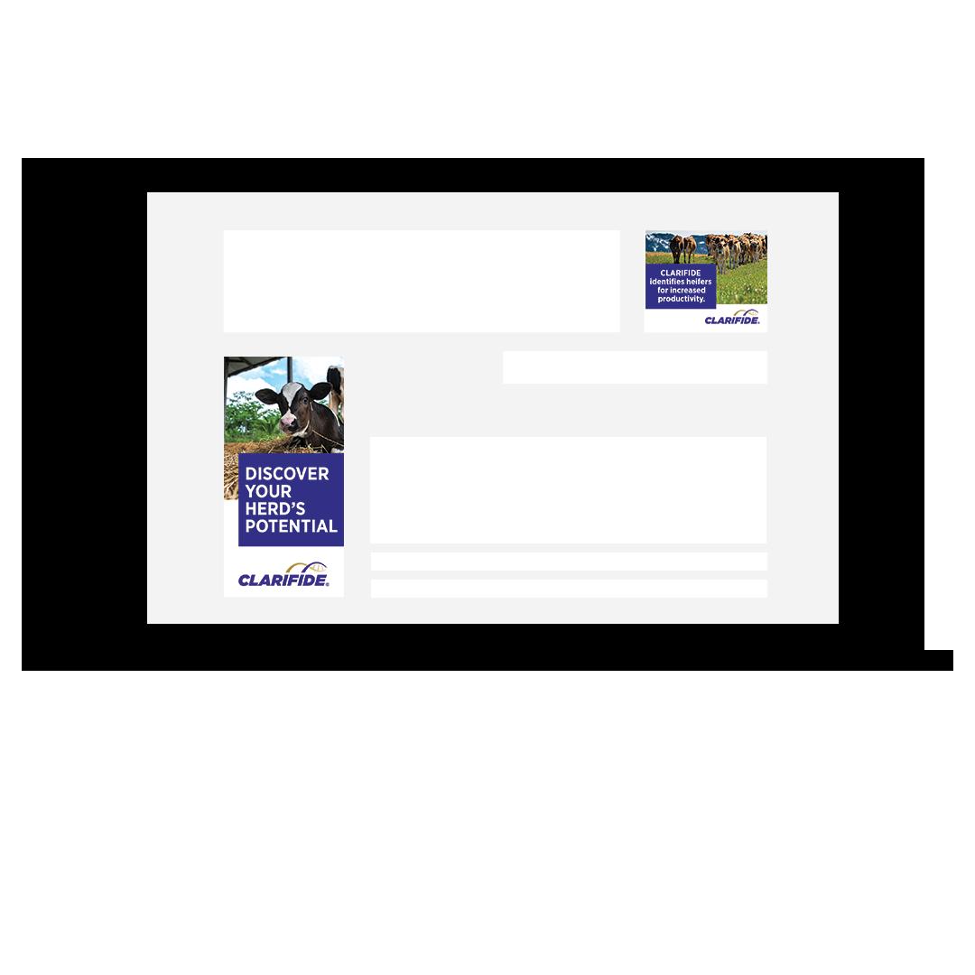 clarifide-banners-spce66-sydney-agency